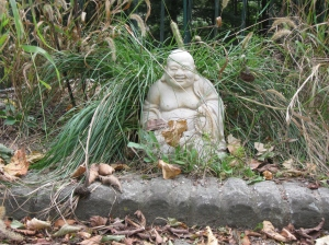 Buddha in the Sedge