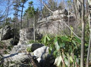 Bear Heaven Rocks