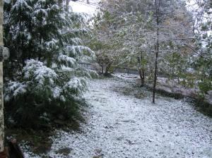 Snowfall 29 October 2011
