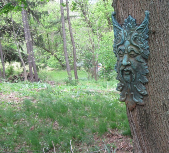 Green Man on the Maple