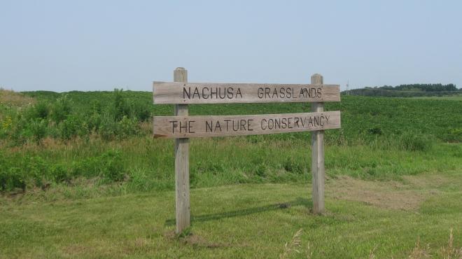 Nachusa Grasslands