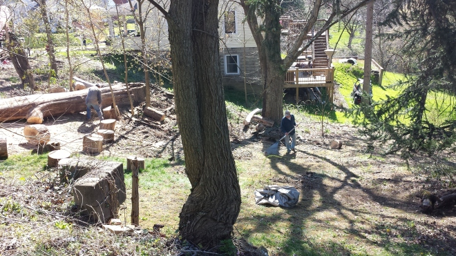 Cleaning up the Elm