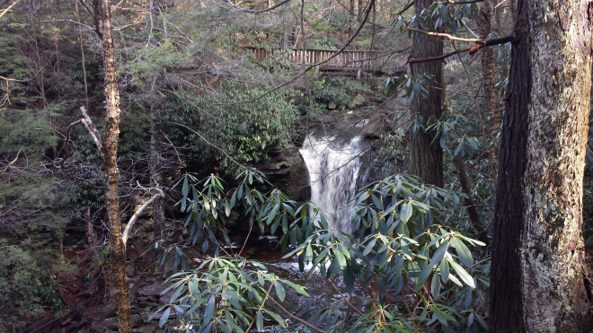 Elakala Falls at Blackwater State Park